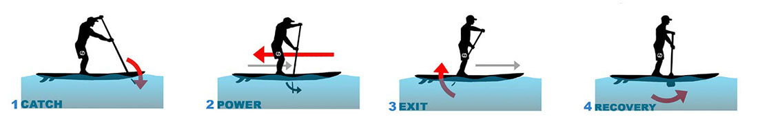 Paddleboard Stroke phases