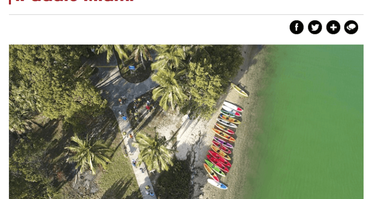 Best Kayaking in Miami iPaddle Miami - New Times