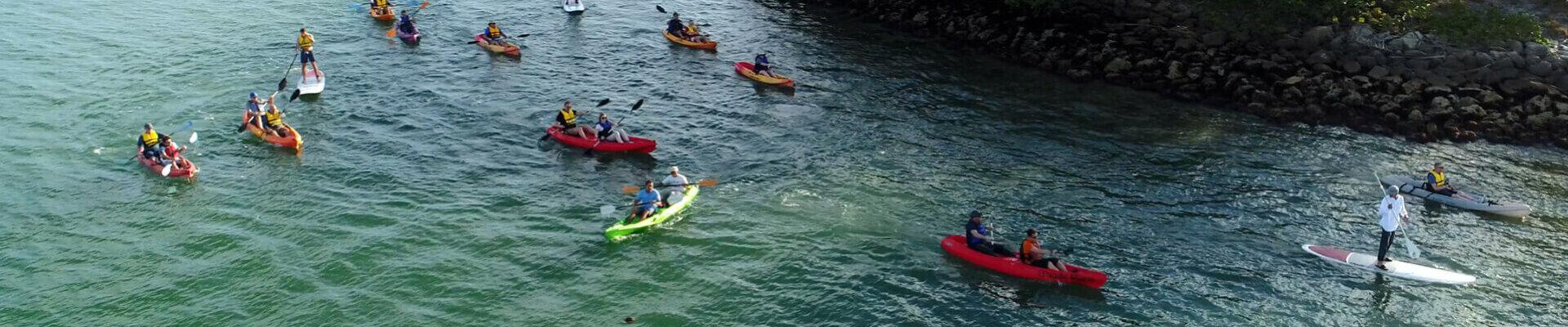 Miami Kayak Paddleboard Rentals